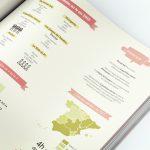 infografia juliero